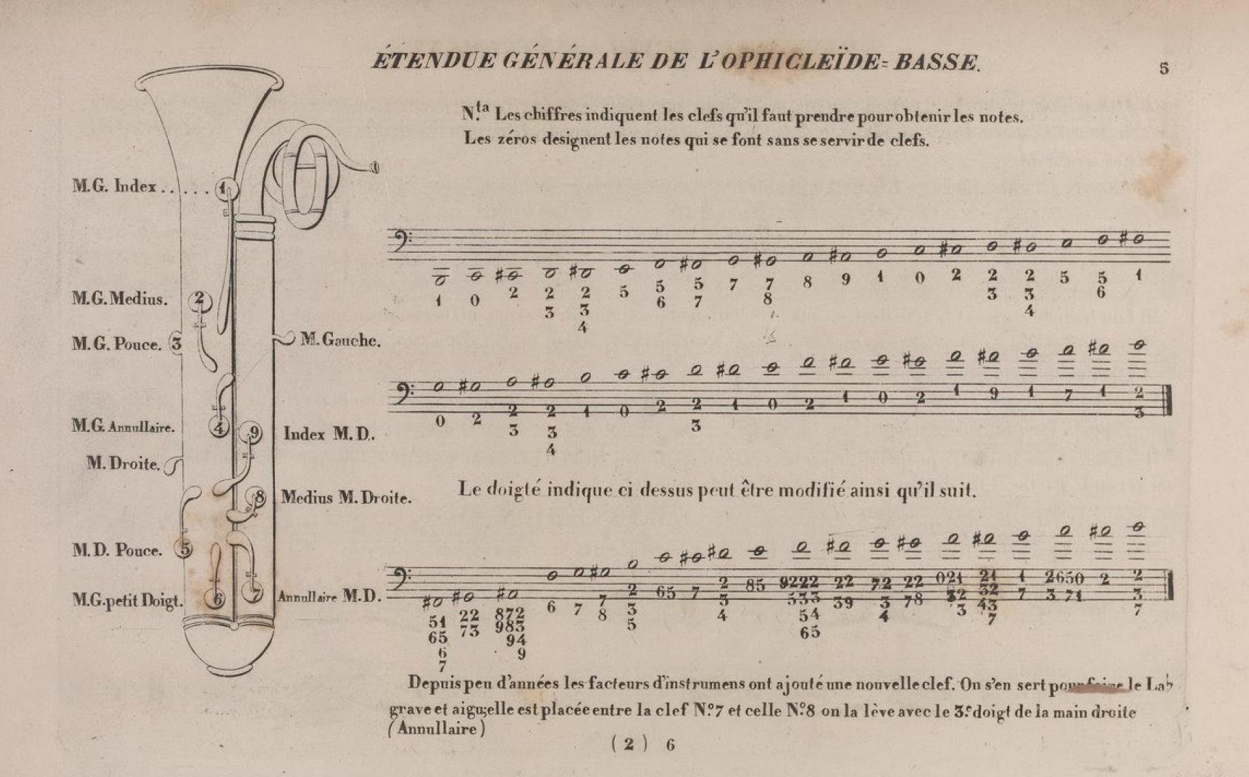 sistermann chart